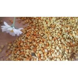 Pelotes de pollen de fleurs de Provence